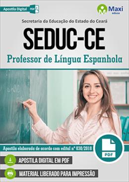 Professor de Língua Espanhola