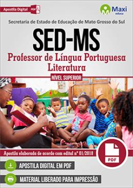 Professor de Língua Portuguesa/Literatura