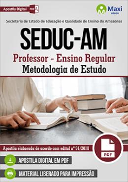 Professor - Ensino Regular Professor – Metodologia de Estudo