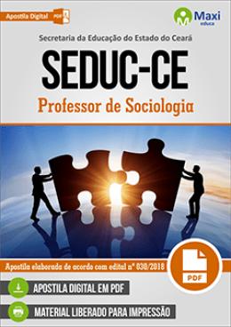 Professor de Sociologia