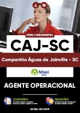 Agente Operacional