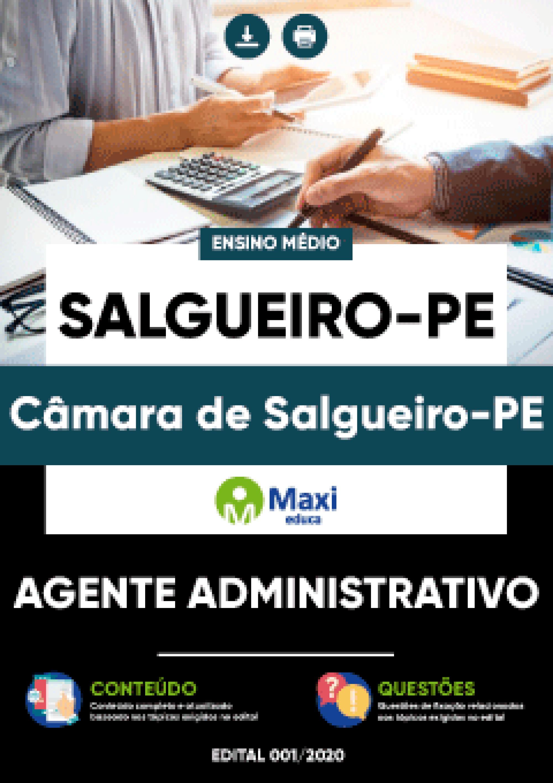 Capa - Apostila Digital em PDF da Câmara de Salgueiro-PE - Agente Administrativo