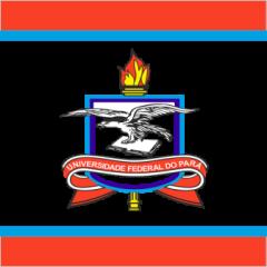 UFPA - Técnico em Edificações