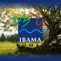 IBAMA - Técnico Administrativo