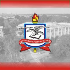 UFPA - Administrador - 2013