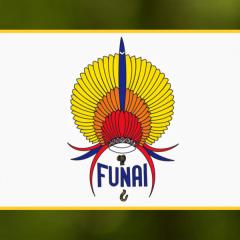FUNAI - Fundação Nacional do Índio