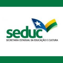SEDUC-PI - Professor
