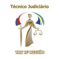 TRT11 - Tribunal Regional do Trabalho da 11ª Região - Ensino Médio